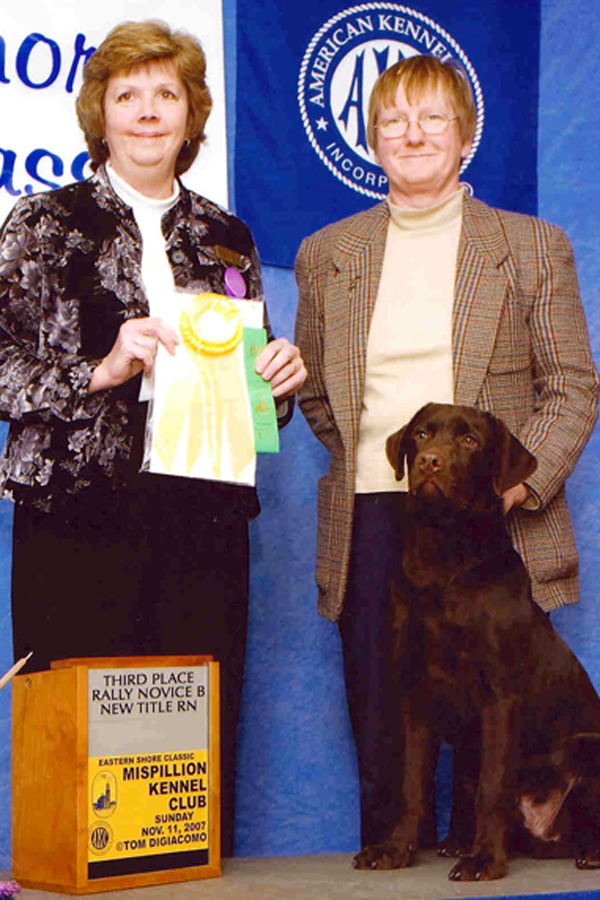 Ranger's AKC Rally Novice title