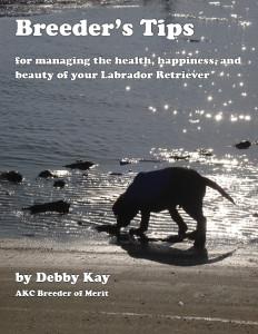 Debby_Kay_Breeder_Tips-cover