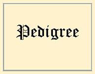Ranger's Pedigree
